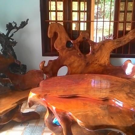 Bàn ghế gỗ Hương gốc cây
